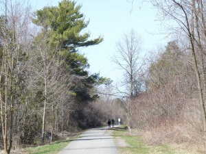 Parkway Trail between Hilliard Street and Cumberland Drive  - Drew Monkman