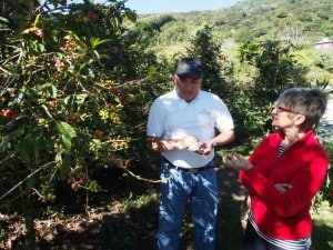 Finca Lerida coffee tour - D. Monkman