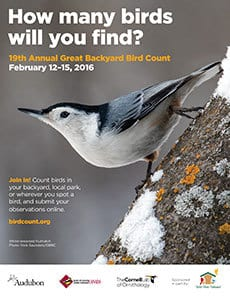 RegularPoster_WBNuthatch_230px