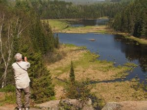 View from lookout on Beaver Pond Trail - Drew Monkman