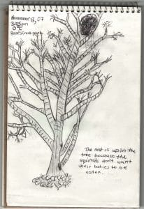 A page from a child's nature journal - photo by Drew Monkman