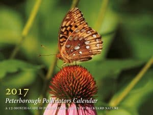 Cover of Peterborough Pollinator's new 2017 calendar (photo by Ben Wolfe)